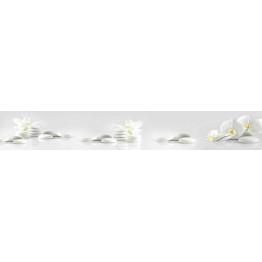 BS 47 - Белые орхидеи и камни