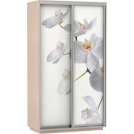 Шкаф-купе Фото Дуо дуб/белая орхидея 1200